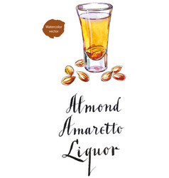 Wineglass of almond liquor amaretto vector