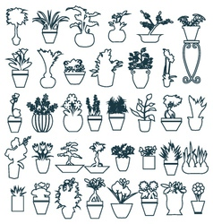 Pot plant cute house plants in pots vector