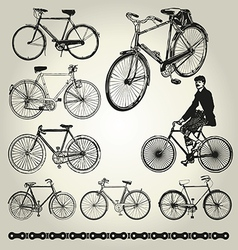 Bicycle retro vector