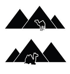 pyramid with camel vector image vector image