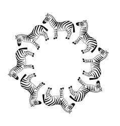 Zebra in circle vector
