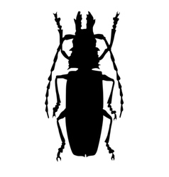 Silhouette of giant beetle vector