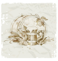 hand drawn beer still life vector image