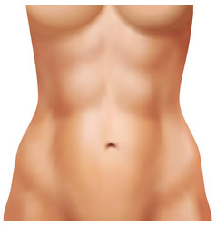 Realistic female body with athletic abs vector