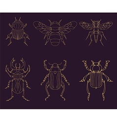Set of the insects design elements vector image vector image