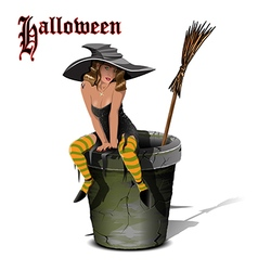Witch on a Mortar vector image