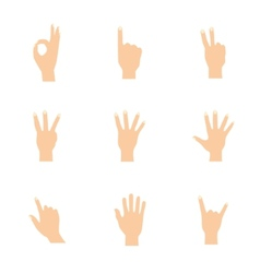Set of woman hands in various vector