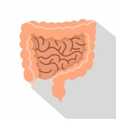 Intestines icon flat style vector
