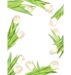 Isolated tulip frame EPS 10 vector image vector image