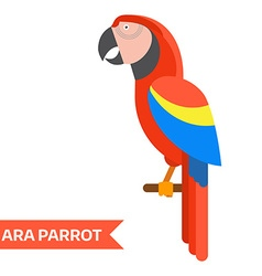 Red ara tropical parrot icon vector