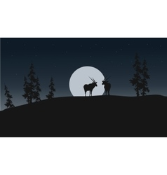 Silhouette of antelope and full moon vector image vector image