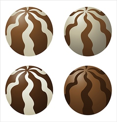 Chocolate dragee vector