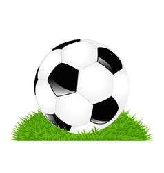 Classic Soccer Ball On Grass vector image vector image