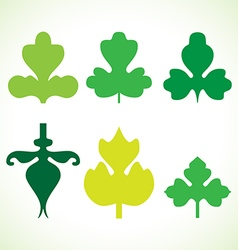 Decorative green leaves pattern set isolated vector