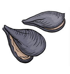 Oysters isolated vector