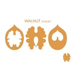 Walnut Icon set vector image vector image