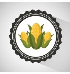 farm countryside corn food design vector image