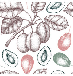 plum vintage background vector image vector image