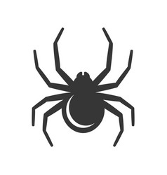 black spider icon vector image vector image