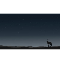 One antelope silhouettes in hill vector