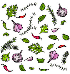 set of spices and vegetables red onion vector image