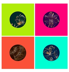 Flower multicolored bright design collection vector