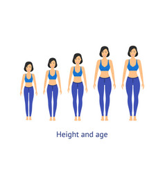 Height and age stage of growth from girl to woman vector