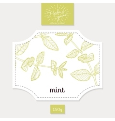 Product sticker with hand drawn mint leaves spicy vector