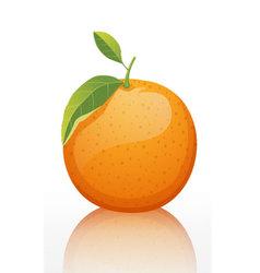 Shiny-orange-fruit-white-background vector