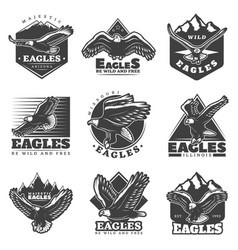 Vintage monochrome american eagles labels set vector