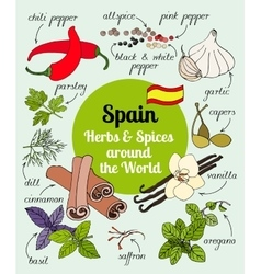 Spain herbs and spices vector