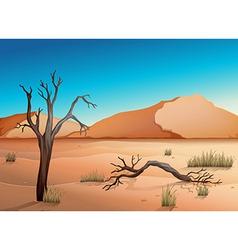 Ecosystem desert vector