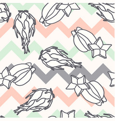 fruits pattern seamless background with carambola vector image
