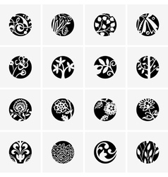Flower round icons vector