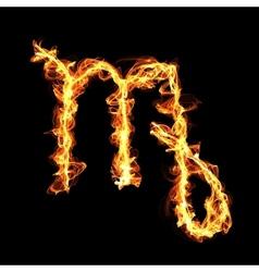 Fire zodiac sign virgo what is karma vector