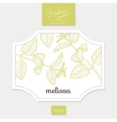Product sticker with hand drawn melissa leaves vector