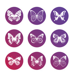 bright icons with white butterflies silhouettes vector image