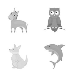 Donkey owl kangaroo sharkanimal set collection vector