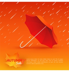 Umbrella Autumn sale vector image vector image