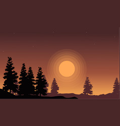 Silhouette of spruce scenery at sunset vector