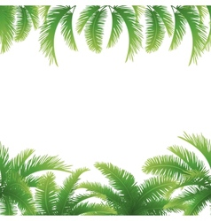 Seamless background palm leaves vector