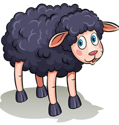A black sheep vector