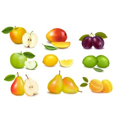 set of color fruit vector image vector image