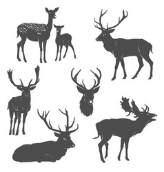 Set of deer silhouettes in different poses vector