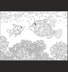 X-ray fish and boxfish vector