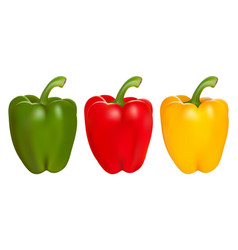 set of red green and yellow peppers vector image