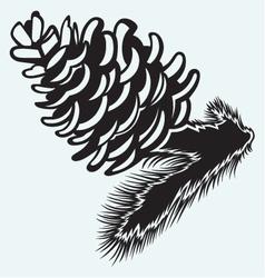 Pine strobile vector image