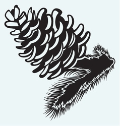 Pine strobile vector