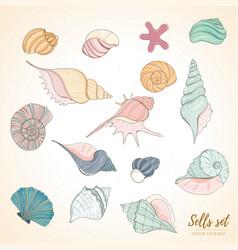 Seashell paradise holiday marine set vector
