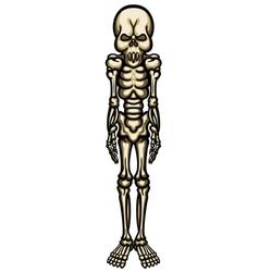 Fantasy decorative skeleton vector image